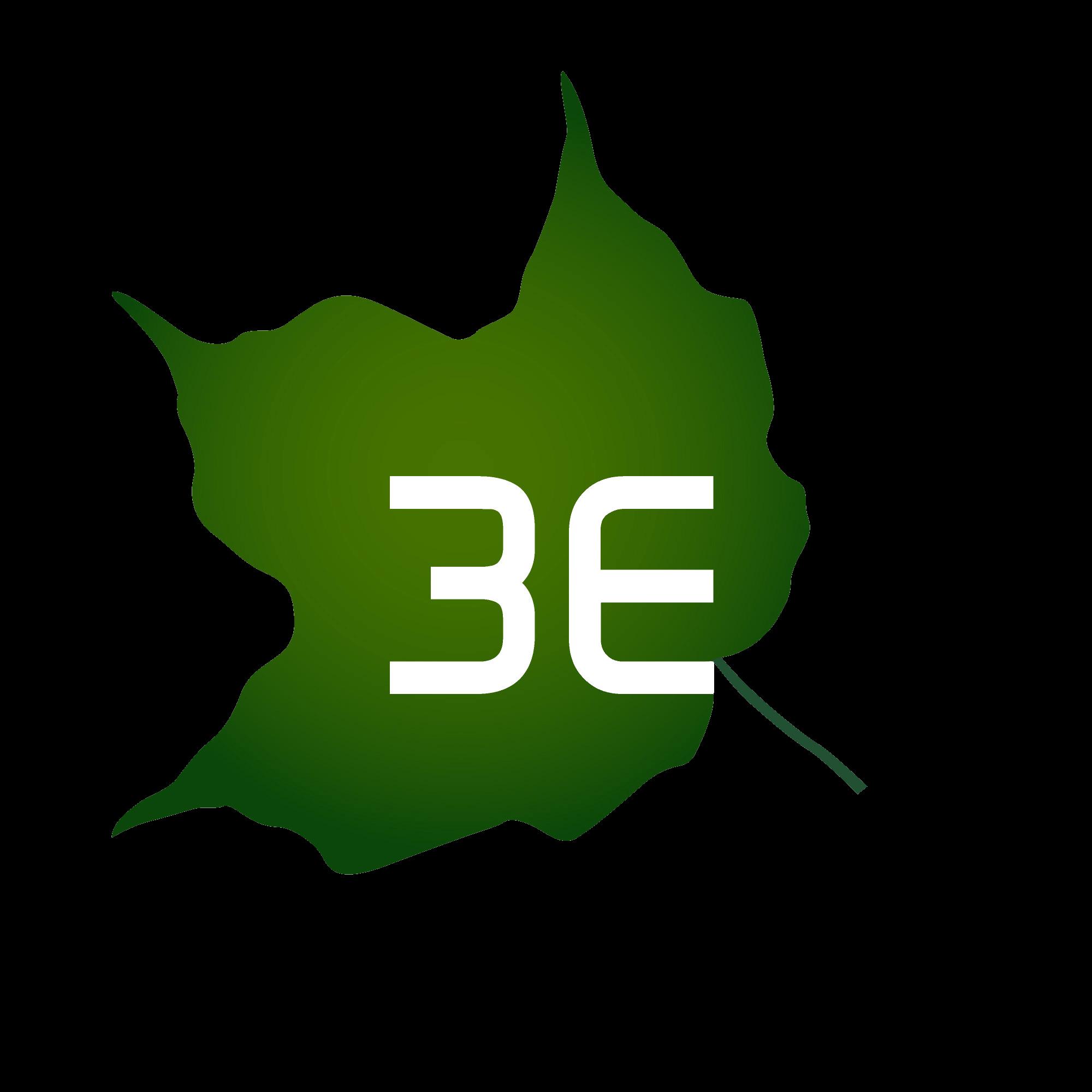 3E image